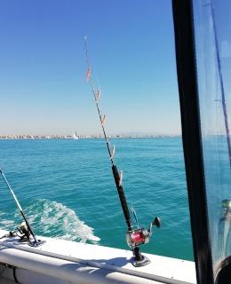 Filose pronte alla pesca